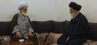 Grand Ayatollah Sheikh Mohammad Rahmati Visits Grand Ayatollah Shirazi