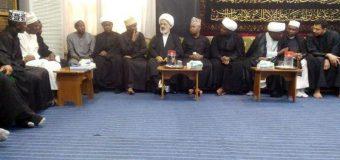 Representative of Grand Ayatollah Shirazi Hosts African Clerics in Holy Najaf