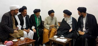 Clerics from Afghanistan Meet Grand Ayatollah Shirazi