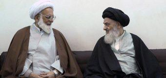 Shia Scholar from Pakistan Meets Grand Ayatollah Shirazi