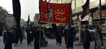Activities by Shia Societies Association in Holy Karbala